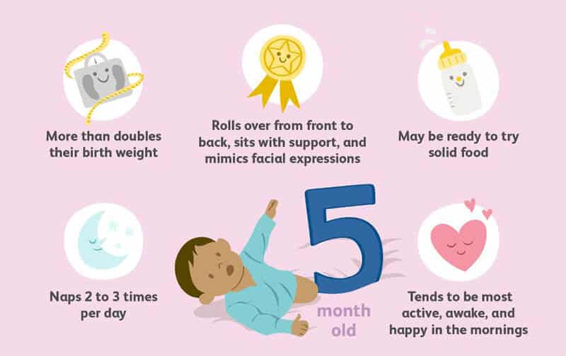 Behaviors you might view in 5-month-olds